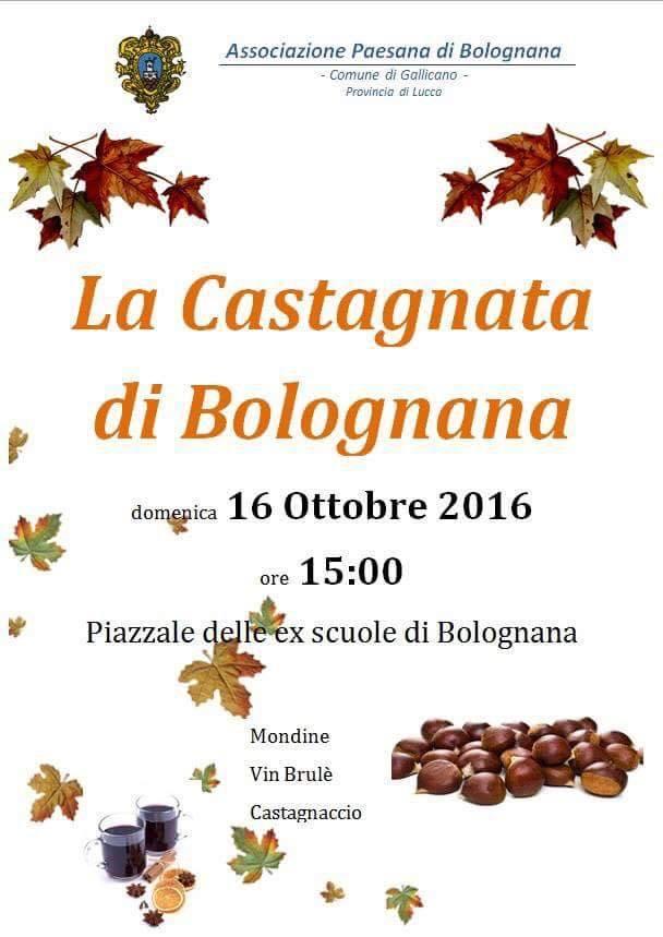 Castagnata Bolognana